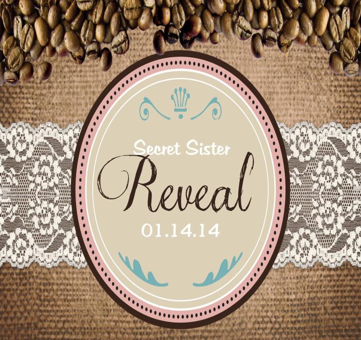 Reveal 14